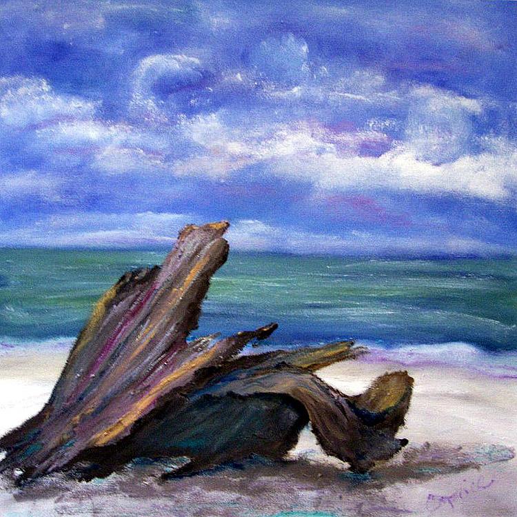 driftwood-i